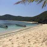 The Octopus beach