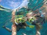 sober snorkelers
