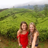 A walk through tea fields at Amaya Langdale