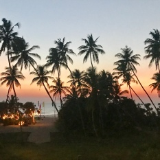 Dinner views at Wunderbar in Bentota